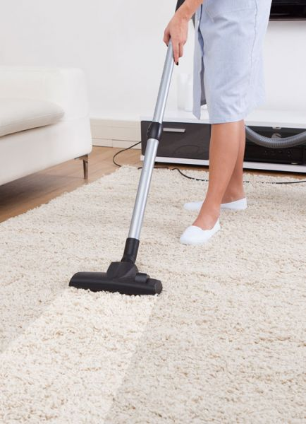 Carpet Cleaning & Carpet Cleaner to Renew & Rejuvenate your home